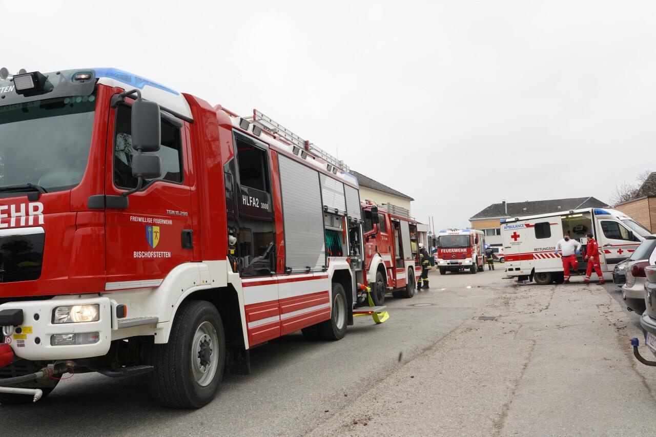 117 pompieri au intervenit pentru a stinge flăcările. Foto: noen.at
